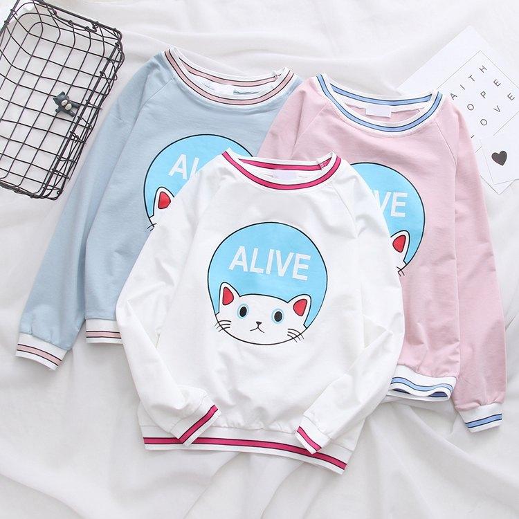 catpinksweater 3